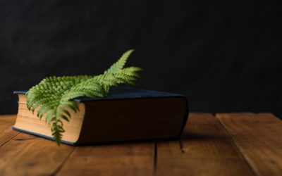A Bábeli zűrzavar mágikus feloldása
